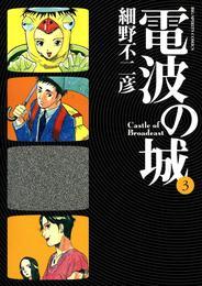 電波の城(3) 漫画