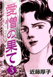 愛憎の果て (3) 漫画