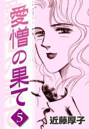 愛憎の果て (5) 漫画