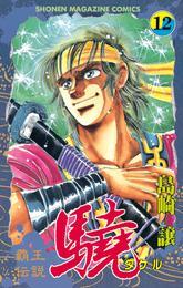 覇王伝説 驍(タケル)(12) 漫画