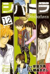 シバトラ(12) 漫画