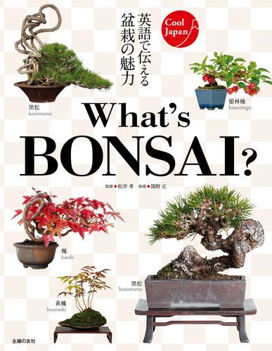 What's BONSAI ? 漫画