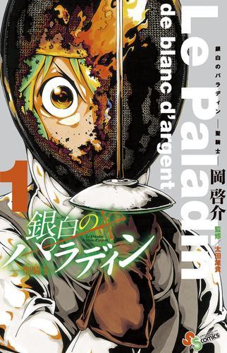 銀白のパラディン -聖騎士- 漫画