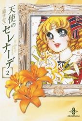 天使のセレナーデ 2 冊セット全巻 漫画