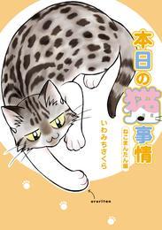 本日の猫事情 ねこまんたん編 漫画