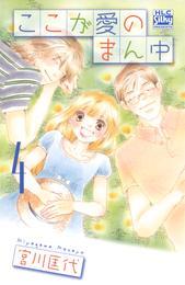 ここが愛のまん中 4巻 漫画