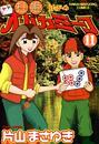 打姫オバカミーコ (11) 漫画