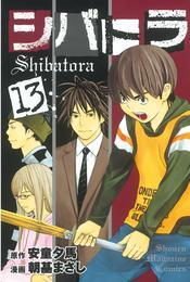 シバトラ(13) 漫画