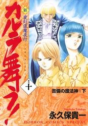 変幻退魔夜行 新・カルラ舞う! 巻の十 吉備の護法神:下 漫画