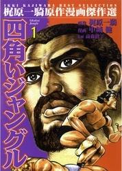四角いジャングル 12 冊セット全巻 漫画