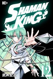 SHAMAN KING ~シャーマンキング~ KC完結版(12)