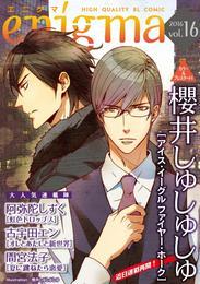 enigma vol.16 アイス・イーグル ファイヤー・ホーク、ほか 漫画