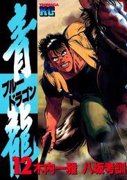 青龍<ブルードラゴン>(12) 漫画