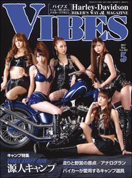 VIBES【バイブズ】2017年5月号 漫画