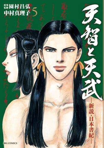 天智と天武 ―新説・日本書紀― 漫画