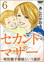 セカンド・マザー(分冊版)~特別養子縁組という選択~ 【第6話】 漫画