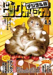 ビッグコミックオリジナル 2017年7号(2017年3月20日発売) 漫画
