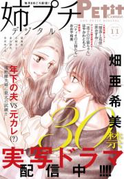 姉系Petit Comic 16 冊セット最新刊まで 漫画