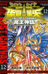 聖闘士星矢 THE LOST CANVAS 冥王神話 12 漫画