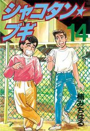 シャコタン★ブギ(14)