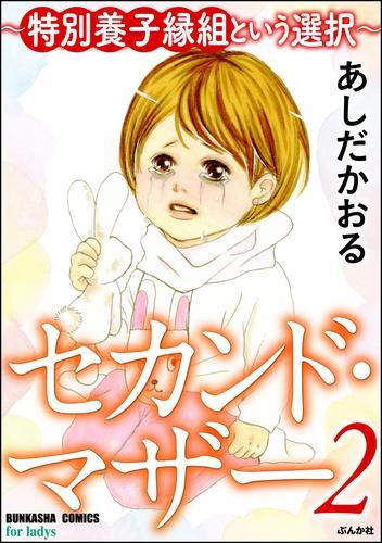 セカンド・マザー~特別養子縁組という選択~  漫画