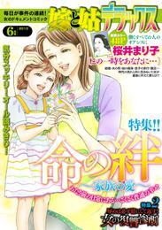 嫁と姑デラックス 2013年6月号 漫画
