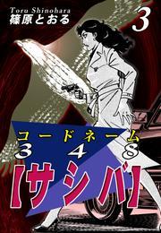 コードネーム348【サシバ】(3)