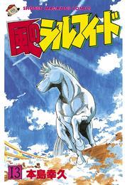 風のシルフィード(13) 漫画