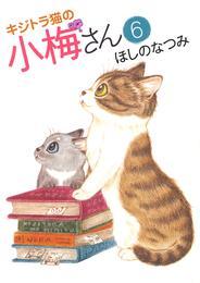 キジトラ猫の小梅さん(6) 漫画