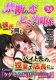 禁断の恋 ヒミツの関係 vol.28 漫画