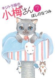 キジトラ猫の小梅さん(7) 漫画