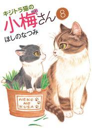キジトラ猫の小梅さん(8) 漫画