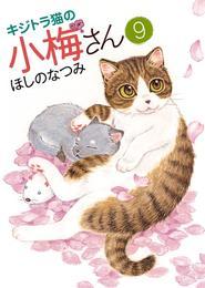 キジトラ猫の小梅さん(9) 漫画