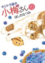 キジトラ猫の小梅さん(10) 漫画