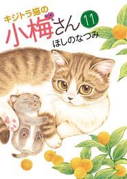 キジトラ猫の小梅さん(11) 漫画