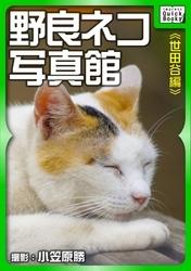 野良ネコ写真館 5 冊セット最新刊まで 漫画