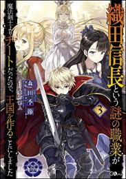 【ライトノベル】織田信長という謎の職業が魔法剣士よりチートだったので、王国を作ることにしました (全3冊)
