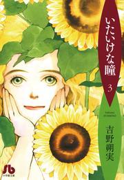 いたいけな瞳〔文庫〕(3) 漫画