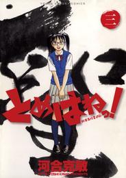 とめはねっ! 鈴里高校書道部(3) 漫画
