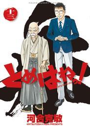 とめはねっ! 鈴里高校書道部(13) 漫画