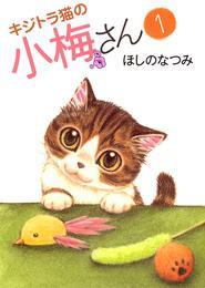 キジトラ猫の小梅さん(1) 漫画