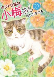 キジトラ猫の小梅さん 15 冊セット最新刊まで 漫画