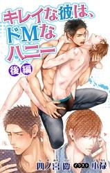 小説花丸 キレイな彼は、ドMなハニー 2 冊セット最新刊まで 漫画