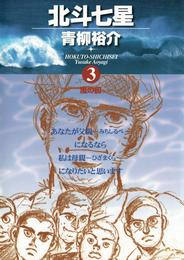 北斗七星(3) 漫画