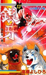 銀牙―流れ星 銀― 第13巻 漫画