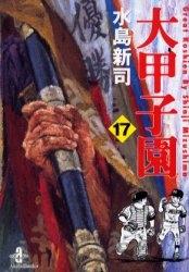 大甲子園 [文庫版] (1-17巻 全巻) 漫画