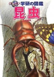 【図鑑】昆虫