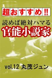 【超おすすめ!!】読めば絶対ハマる官能小説家vol.12丸茂ジュン 漫画