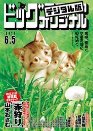 ビッグコミックオリジナル 2017年11号(2017年5月20日発売) 漫画