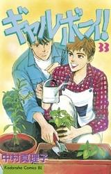 ギャルボーイ! 33 冊セット全巻 漫画